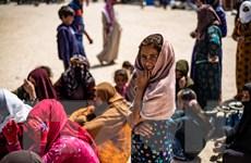 Thế giới mất 20 tỷ USD trong năm 2020 do hoạt động di cư nội địa