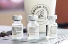 Dịch COVID-19: WHO mua 40 triệu liều vắcxin của Pfizer/BioNTech