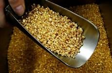 Uzbekistan hút khách nước ngoài tới tham quan hoạt động của mỏ vàng