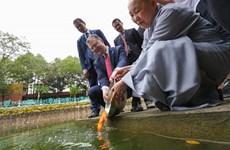 Ấn tượng Tết cổ truyền của Việt Nam trong mắt Đại sứ các nước