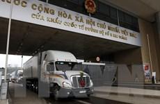Hơn 14.000 tấn thanh long xuất sang Trung Quốc qua cửa khẩu Lào Cai