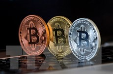 ''Cơn sốt'' bitcoin thổi bùng quan ngại về 'bong bóng' đầu cơ