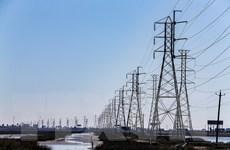Mỹ: Nhiều thành viên Hội đồng điều phối điện bang Texas từ chức