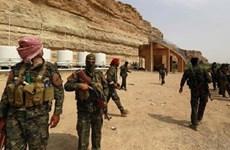Syria: Hai quả mìn phát nổ tại tỉnh Hama khiến 21 người thương vong