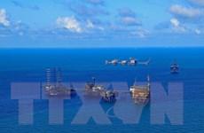 Hàng loạt cổ phiếu ngành dầu khí bùng nổ theo đà tăng của giá dầu