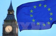 Nghị viện châu Âu hoãn lịch trình duyệt thỏa thuận thương mại EU-Anh