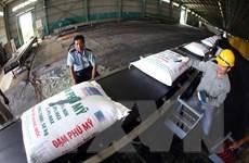 Giá phân bón tăng cao: Doanh nghiệp cần công khai thông tin