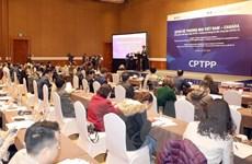 Đa dạng liên kết thương mại Việt Nam-Canada từ Hiệp định CPTPP