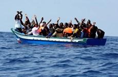 34 người di cư thiệt mạng do bị lật thuyền ngoài khơi bờ biển Djibouti