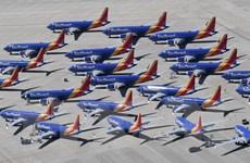 Phát hiện thêm vấn đề trong hệ thống điện của máy bay Boeing 737 MAX