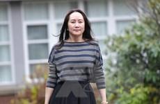 CFO Huawei Mạnh Vãn Châu đề nghị hoãn phiên tranh tụng thêm 4 tháng