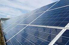 Mỹ: Samsung C&T xem xét đầu tư vào các nhà máy điện Mặt Trời ở Texas