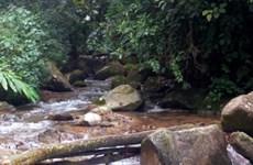 Lai Châu: Một 'phượt thủ' đột tử trên đường lên đỉnh Pu Si Lung