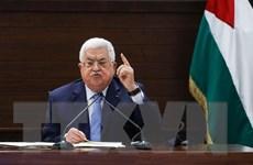 Palestine tổ chức đối thoại nhằm thành lập chính phủ đoàn kết