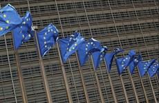 EU muốn thống nhất các quy định về thuế doanh nghiệp trên toàn khối