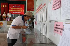 Đến 11 giờ ngày 23/5, tỷ lệ cử tri cả nước đi bầu cử đạt 66,84%