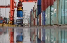 OECD: Thương mại hàng hóa của G20 đạt mức cao kỷ lục trong quý 1