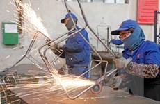 Môi trường lao động an toàn: Động lực thúc đẩy phát triển bền vững