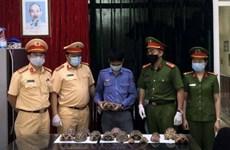 Bắt giữ nhân viên đường sắt vận chuyển 17 cá thể rùa quý hiếm