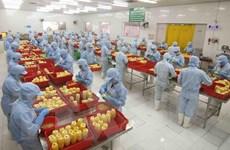 Công nghiệp chế biến, chế tạo đóng vai trò chủ lực trong thu hút FDI