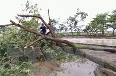 Các địa phương khắc phục hậu quả do bão số 2 và mưa lũ sau bão