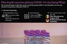 [Infographics] Phê duyệt vaccine ngừa COVID-19 của Pfizer/BioNTech