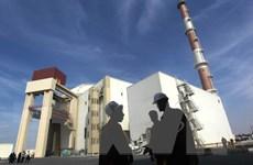 Nhà máy điện hạt nhân duy nhất của Iran ngừng hoạt động khẩn cấp
