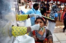 Dịch COVID-19: Ấn Độ ghi nhận số ca nhiễm mới trong ngày dưới 50.000