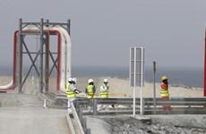 UAE chỉ trích thỏa thuận sản lượng dầu mỏ hiện nay của OPEC+