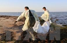 Chìm thuyền ở ngoài khơi Tunisia, ít nhất 21 người thiệt mạng