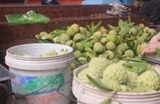 Quảng Ninh: Tạo điều kiện hỗ trợ nông dân lưu thông, tiêu thụ nông sản