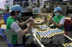 Bộ Kế hoạch và Đầu tư hỗ trợ DN xuất khẩu qua thương mại điện tử