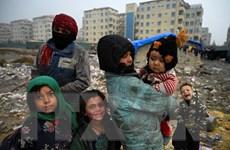 Mỹ tiếp nhận thêm hàng nghìn người tị nạn Afghanistan