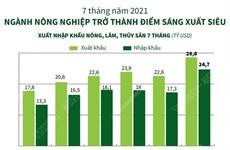 [Infographics] Ngành nông nghiệp trở thành điểm sáng xuất siêu