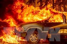 Mỹ: Vụ cháy rừng tại bang California lớn nhất trong năm 2021