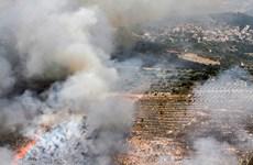 Tổng thư ký LHQ kêu gọi kiềm chế tại biên giới Israel-Liban