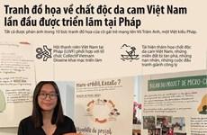 Họa sỹ Pháp gây chú ý với tranh đồ họa về chất độc da cam ở Việt Nam