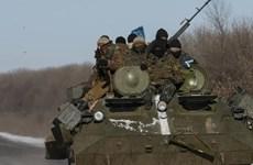 Đụng độ ở miền Đông Ukraine gây thương vong cho binh sỹ và dân thường
