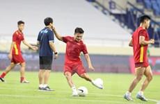 Tuyển Việt Nam đứng đầu Đông Nam Á trong Bảng xếp hạng FIFA tháng 8