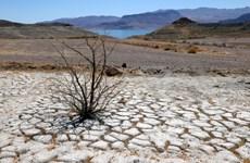Hạn hán đe dọa nguồn cung cấp nước cho hàng chục triệu người Mỹ
