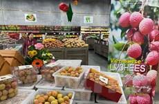 Nông sản Việt Nam xuất khẩu sang Australia tăng trưởng mạnh mẽ
