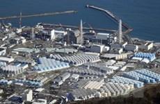 Nhật Bản: TEPCO tham vấn ngư dân về xả thải nhà máy điện Fukushima