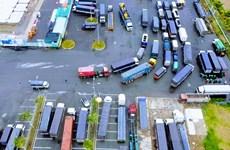 COVID-19 khiến thương mại, vận tải và du lịch giảm mạnh trong tháng 8