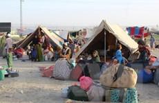 Người dân Afghanistan đổ xô về khu vực biên giới tìm cơ hội di tản