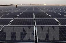 WTO ra phán quyết về tranh chấp Mỹ-Trung Quốc với tấm pin năng lượng
