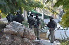 Israel bắt giữ thêm thân nhân của những tù nhân Palestine vượt ngục