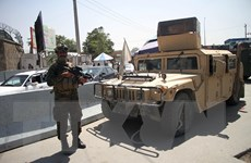Taliban bác thông tin lễ nhậm chức chính phủ mới diễn ra vào ngày 11/9