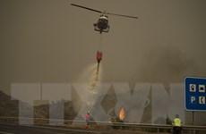 Tín hiệu tích cực trong công tác dập tắt cháy rừng ở Tây Ban Nha