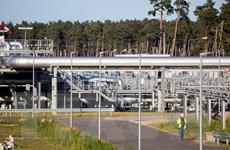 Đức bắt đầu xem xét đơn xin vận hành dự án Dòng chảy phương Bắc 2