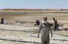 Hơn 139 triệu người bị ảnh hưởng do biến đổi khí hậu và dịch COVID-19